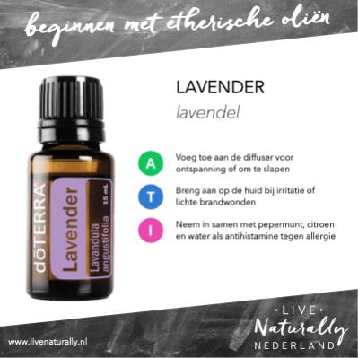 Beginnen met Lavendel